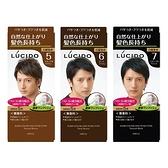 日本 LUCIDO 按壓式染髮霜(50gx2) 4款可選【小三美日】