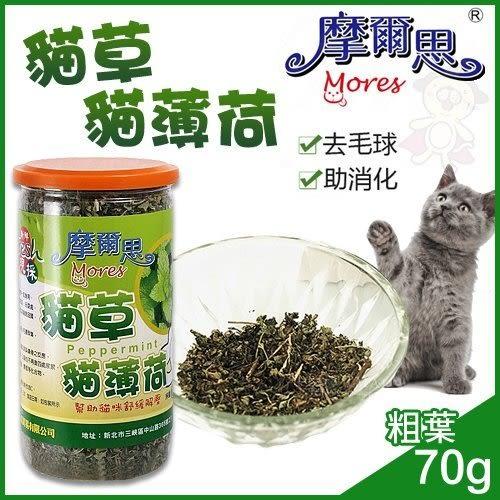 *KING WANG*摩爾思-貓草70g(粗葉) /貓薄荷/貓零食/貓玩具/貓大麻/好消化/去毛球