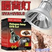 曬背燈 RS爬蟲太陽燈曬背燈烏龜缸半水龜兩棲UVA UVB3.0全光譜鹵素燈爬寵 快速出貨