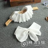 假領子 蕾絲裝飾領白色刺繡鏤空襯衣領純棉蕾絲領 轉角1號