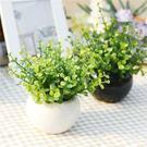 仿真綠植物小盆栽盆景家居擺設擺件客廳室內...