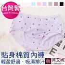 小女生俏皮可愛貼身內褲 貼身 棉質 台灣製造 No.1005 -席艾妮SHIANEY