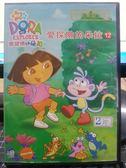 挖寶二手片-B15-019-正版DVD-動畫【DORA:愛探險的朵拉 12 雙碟】-套裝 國英語發音 幼兒教育