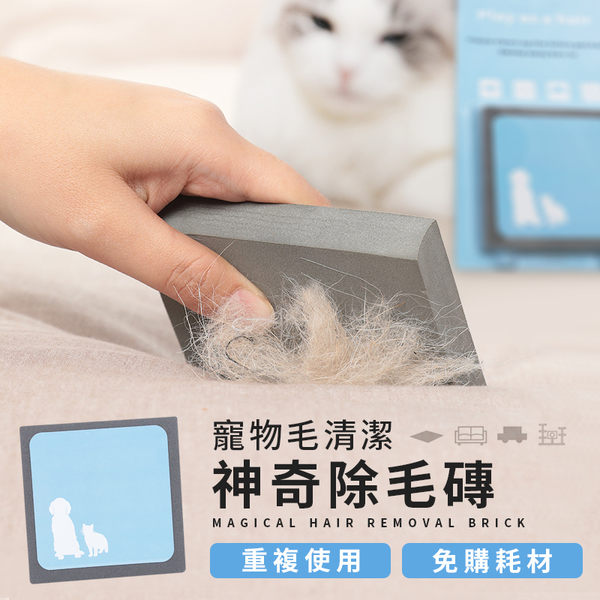 寵物毛清潔 神奇除毛磚【HNC952】毛髮清潔刷除毛刷狗毛貓毛清理器清潔寵物用品#捕夢網
