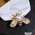 小蜜蜂胸針女胸花珍珠別針韓國奢華大氣簡約可愛學生配飾外套大衣 夢幻小鎮