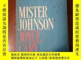 二手書博民逛書店英文原版小說罕見MISTER JOHNSONY250006 JO