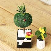 【迎光】心形幸福苔樹-黑