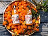 【好結果】高雄型農大聯盟★高雄美濃橙蜜香小番茄汁 一箱18瓶 免運