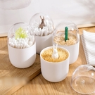 北歐造型 牙籤罐 棉籤罐 棉花棒收納罐 麋鹿/仙人掌造型 北歐風 裝飾 居家小物【RS870】