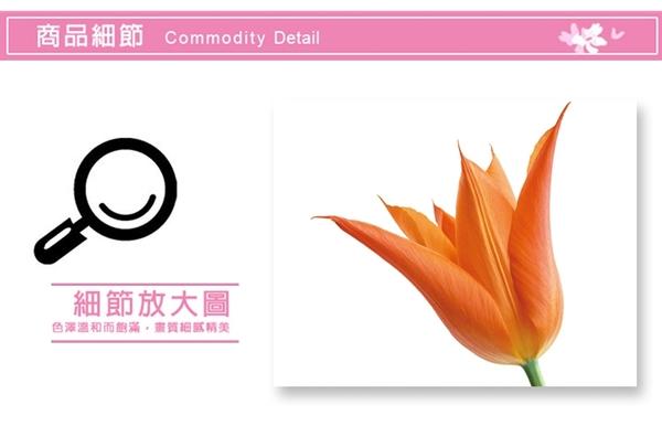 壁貼-鬱金香花 AY6007-478【AF01013-478】99愛買小舖