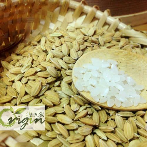 【鮮食優多】源天然・白米10包組(2kg/包)