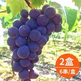 【樂品食尚】卓蘭特產-產地直送巨峰葡萄5斤x2盒(6串/盒)