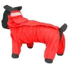 泰迪雨衣寵物雨披