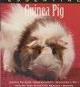 二手書R2YB《THE ESSENTIAL Guinea Pig》1998-IS