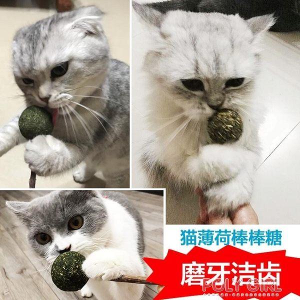 貓咪玩具用品貓薄荷棒棒糖逗貓棒磨牙潔齒木天蓼棒貓草貓零食 polygirl
