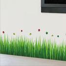 壁貼 青青小草 創意壁貼 無痕壁貼 壁紙 牆貼 室內設計 裝潢【YV2881】Loxin