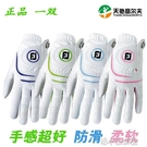 高爾夫手套 高爾夫手套女款 雙手 進口FJ手套 小羊皮 柔軟 耐磨 高爾夫球用品 快速出貨