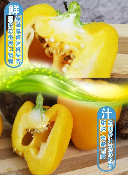 鮮採家 特選肉厚六角蒂綜合彩椒組合3台斤(青椒.紅椒.黃椒)