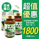 自然革命 L型發酵離子乳酸鈣(60粒) 2入保養組【新高橋藥妝】