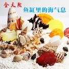 魚缸裝飾貝殼天然海螺貝殼魚缸造景造景水族...