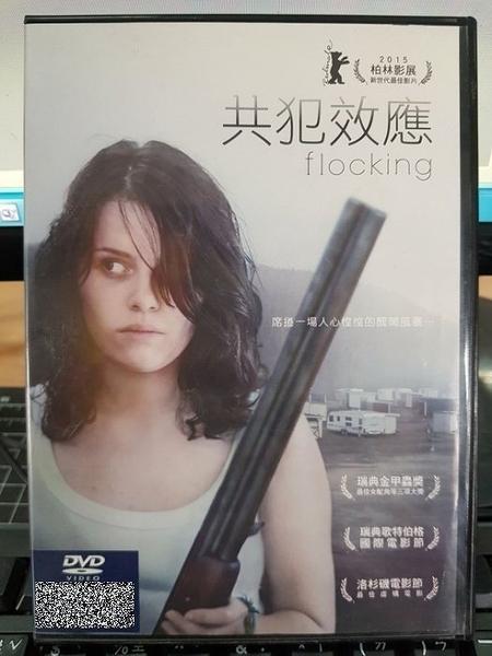 挖寶二手片-Z50-029-正版DVD-電影【共犯效應】-約翰瑞斯托(直購價)