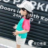 女童裝夏裝插肩袖韓版休閑兒童短袖純棉T恤女寶寶小孩打底衫衣服-奇幻樂園