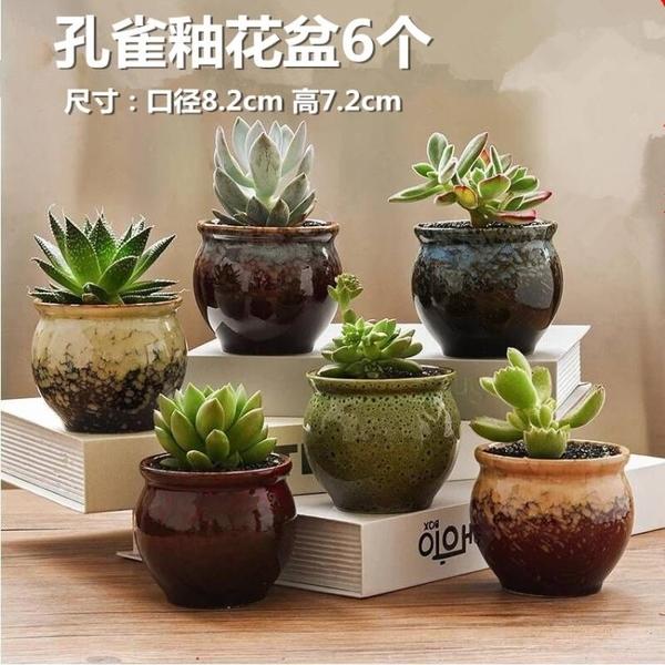20個裝 多肉花盆陶瓷肉肉植物粗陶透氣盆栽小花盆