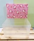 【震撼精品百貨】Hello Kitty 凱蒂貓~三麗鷗HELLO KITTY塑膠收納盒/收納提盒#00109