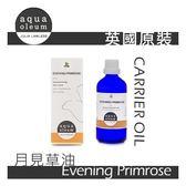 AO 月見草油 100ml。Evening Primrose。Aqua Oleum 英國原裝