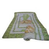【1929居家生活館】彼得兔206浮雕絲毯
