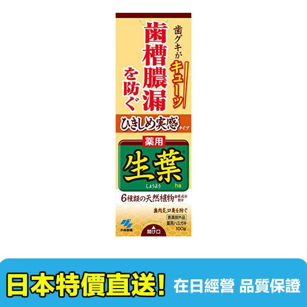 【海洋傳奇】【滿千日本空運免運】日本小林製藥 生葉牙膏 100g 牙齦