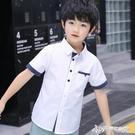 男童白襯衫短袖2020新款中大童純棉襯衣男孩夏裝兒童演出上衣薄款 Cocoa