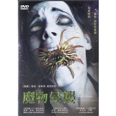 魔物侵襲DVD