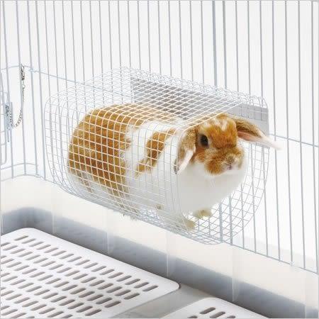 *WANG*日本 Marukan 小動物網狀涼墊、跳台、跳板 MR-638 // 兔˙天竺鼠˙龍貓˙鸚鵡皆適用