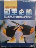 挖寶二手片-Y110-140-正版VCD-其他【國王企鵝:南極來的嬌客】-(直購價)無外紙盒