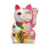 4D MASTER Fortune Cat 解剖公仔 招財貓 白色 【鯊玩具Toy Shark】
