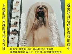 二手書博民逛書店Lhasa罕見Apso: Dog Breed Expert Se