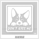 【愛車族購物網】DON'T KISS ME 柯基犬貼紙 11.5×11.5cm