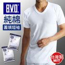 BVD 純棉圓領短袖 ~DK襪子毛巾大王
