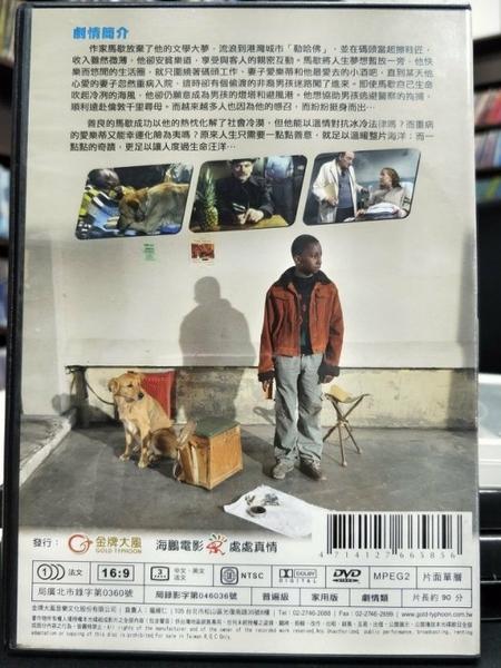 挖寶二手片-P58-003-正版DVD-電影【溫心港灣】-芬蘭奧斯卡最佳影片(直購價)