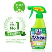 日本 Kao 花王 頑強髒污去污噴劑 300ml 衣物清潔 清潔劑 清潔 衣物漂白噴劑 漂白劑