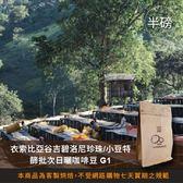【咖啡綠商號】衣索比亞谷吉碧洛尼珍珠小豆特篩批次日曬咖啡豆G1(半磅)