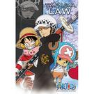 【台製拼圖】海賊王/航海王/One Piece 羅(1) (204片) HP0204-099