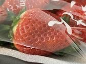 日本空運佐賀縣草莓 直送 草莓季 進口水果 日本草莓 黑貓冷藏宅配