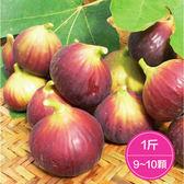 【鮮食優多】名山間・天然紅土無花果1斤(9~10顆)