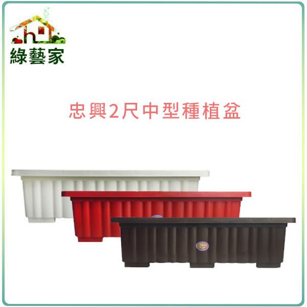 【綠藝家】忠興2尺中型種植專用盆磚紅色、白色、棕色
