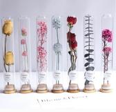 玻璃試管干花滿天星永生花擺件尤加利葉家居裝飾標本干花客廳擺設 台北日光