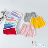 男女童夏裝純棉薄款休閒短褲外穿運動褲【奇趣小屋】