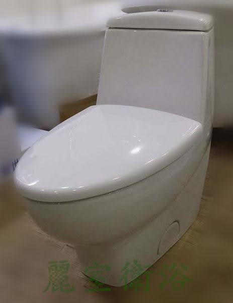【麗室衛浴】客戶升級寄賣 全新限量五顆 德國 Villeroy & Boch 原廠 單體馬桶 型號6689