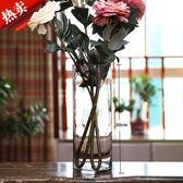 落地客廳擺件插花干花清新大透明玻璃花瓶水培百合富貴竹花瓶